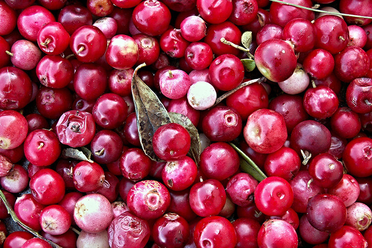 cranberries superfood