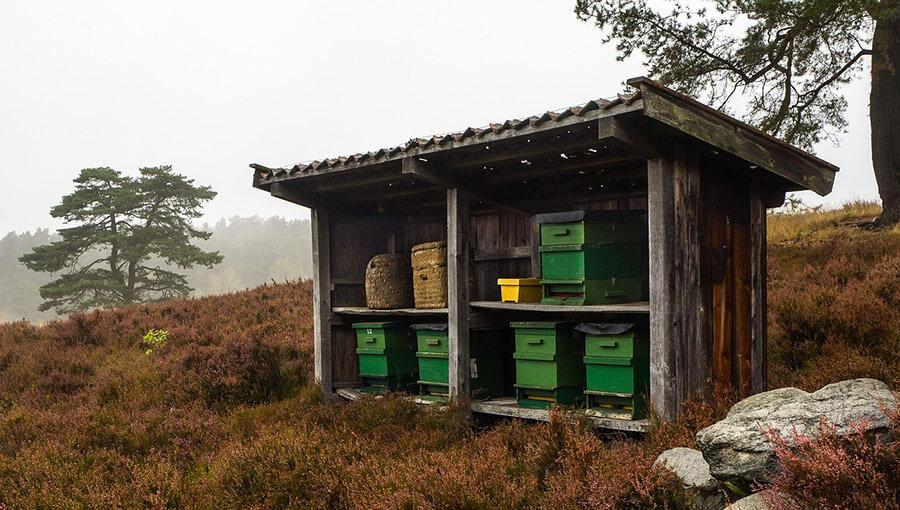 beehive, bee house